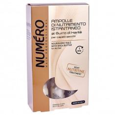 Brelil Numero Karite Питательное средство с маслом карите для сухих волос в ампулах 6х12 мл BRELIL PROFESSIONAL